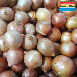 bawang bombay bumbu dapur agro buah pasarolshop- Pesan Di Antar | Buah Sayur Lauk Sembako
