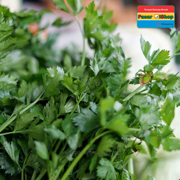 daun seledri agro buah pasarolshop 1b 1- Pesan Di Antar | Buah Sayur Lauk Sembako
