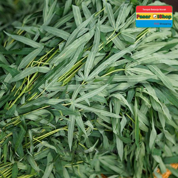 daun singkong agro buah pasarolshop 1b 1- Pesan Di Antar | Buah Sayur Lauk Sembako
