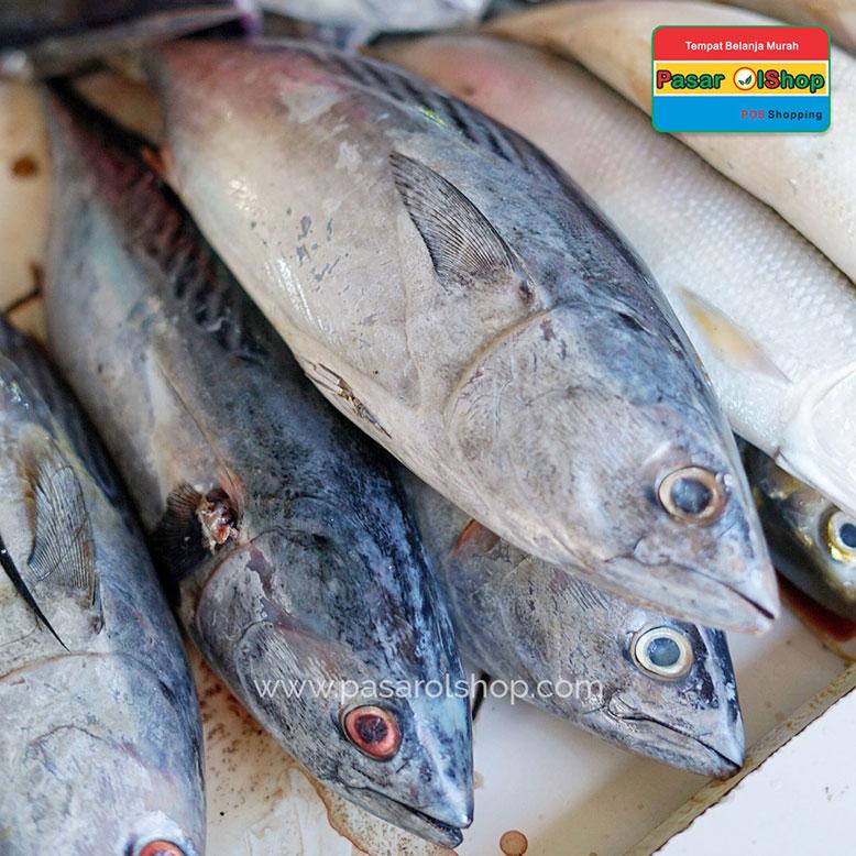 Ikan Tongkol 1 Kg Jual Buah Sayur Lauk Bumbu Sembako
