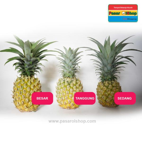 nanas madu pemalang agro buah pasarplshop semua ukuran 1-buah sayur online jogja
