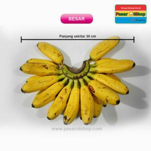 pisang mas kirana ukuran BESAR agro buah pasarolshop 2- Pesan Di Antar | Buah Sayur Lauk Sembako