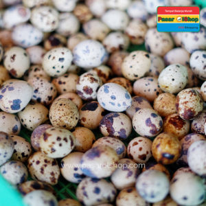 telur puyuh agro buah pasarolshop keranjang 1- Pesan Di Antar | Buah Sayur Lauk Sembako