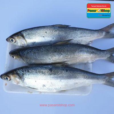 ikan bandeng 1kg agro buah pasarolshop- Pesan Di Antar | Buah Sayur Lauk Sembako