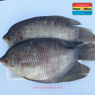 ikan gurame 1kg agro buah pasarolshop- Pesan Di Antar | Buah Sayur Lauk Sembako