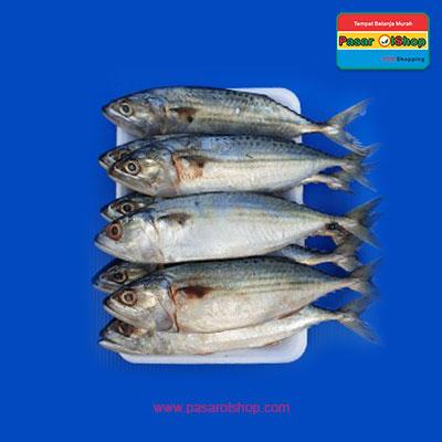 ikan kembung banyar