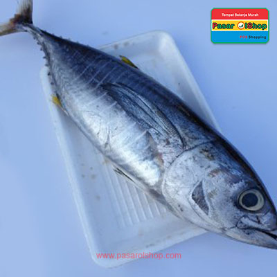 ikan tuna 1 kg agro buah pasarolshop- Pesan Di Antar | Buah Sayur Lauk Sembako