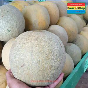 melon daging kuning