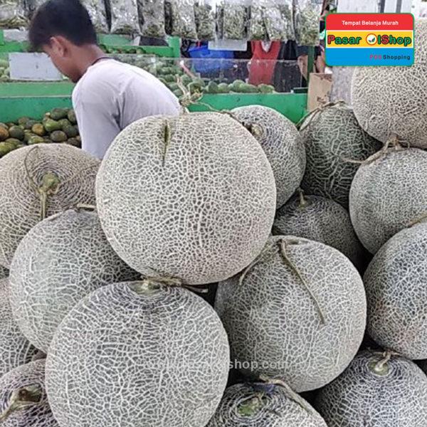 melon sakata