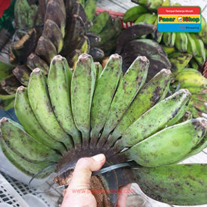 pisang kepok kuning