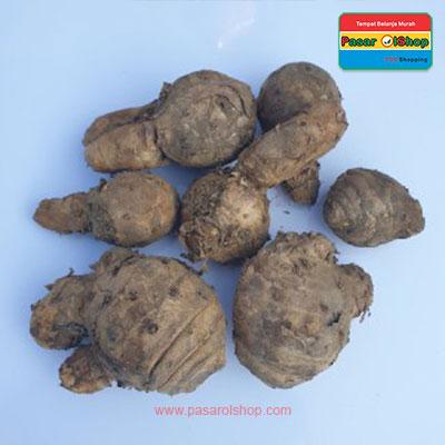 temulawak agro buah pasarolshop- Pesan Di Antar | Buah Sayur Lauk Sembako