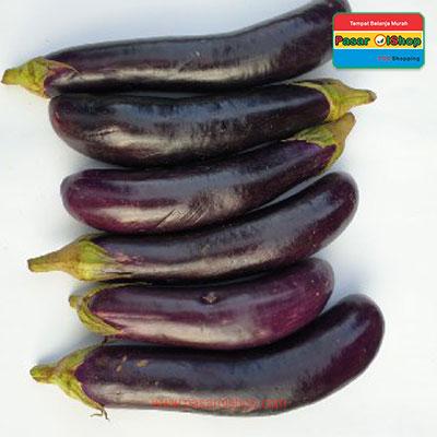 terong ungu eceran agro buah pasar olshop- Pesan Di Antar | Buah Sayur Lauk Sembako