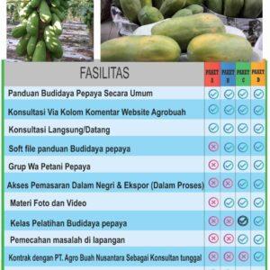 paket panduan menanam pepaya- Pesan Di Antar | Buah Sayur Lauk Sembako
